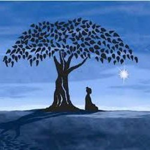 Bodhi Klema's avatar