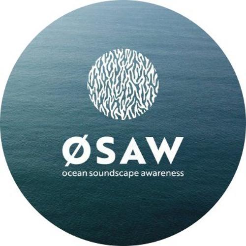 ØSAW's avatar
