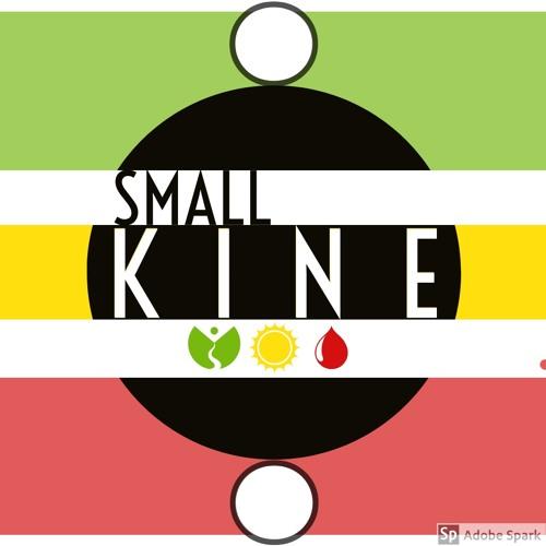 Small Kine's avatar