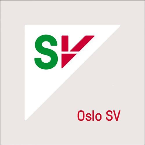 Kollektivsatsing med Ola Wolff Elvevold