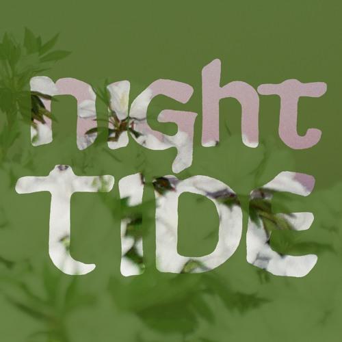 Night Tide & Bermuda Series's avatar