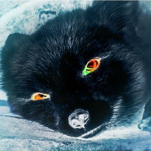 Foxxy's avatar