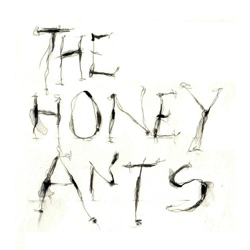 The Honey Ants's avatar