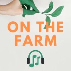 On The Farm   Green Gardens Community Farm Podcast