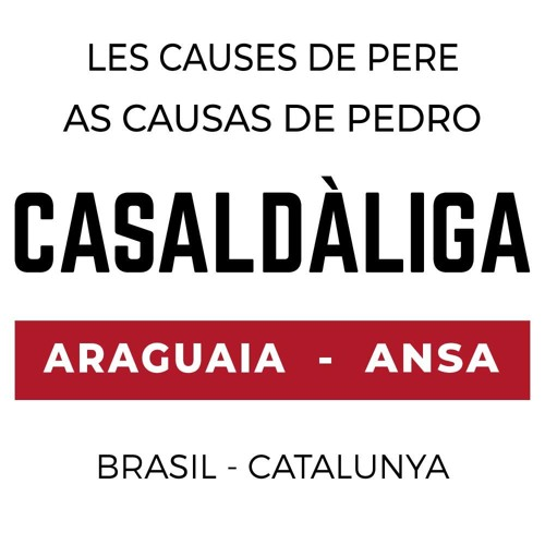 Casaldáliga-causas's avatar