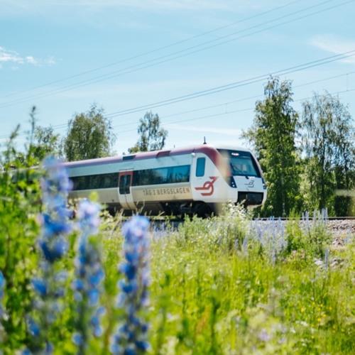 Tåg i Bergslagen's avatar