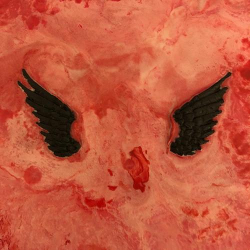 Vinyl Wings's avatar