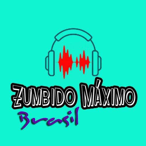 Zumbido Máximo Brazil 🎙️🎶 🇧🇷's avatar