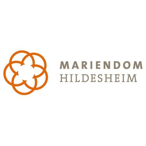 Hildesheimer Dompredigten's avatar
