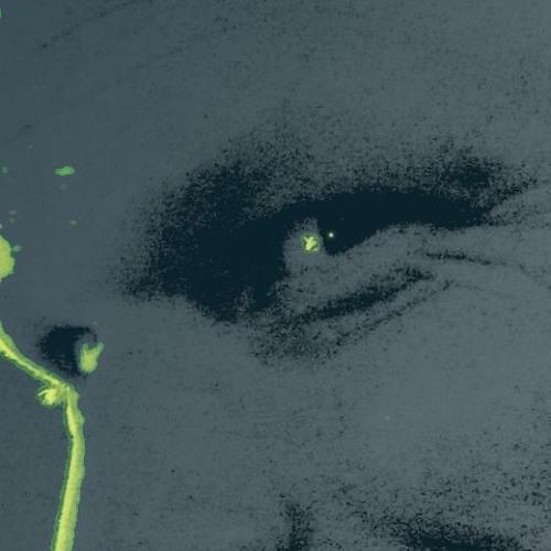Axoplasma's avatar