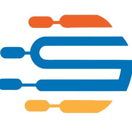 Digital System's avatar