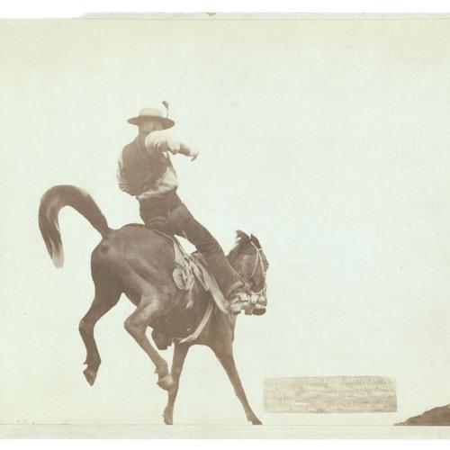 Half-Woke Cowboys's avatar