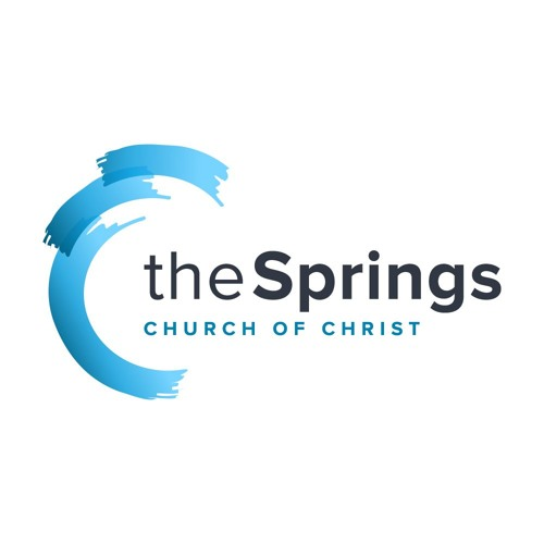 TheSprings.cc's avatar
