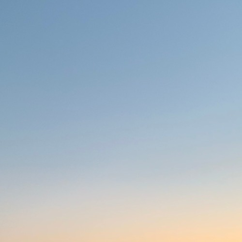 Tegan Wahlgren's avatar