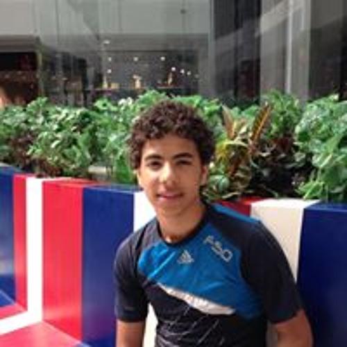 Ahmedhosuin Elmotere's avatar
