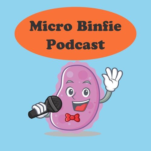 Micro Binfie Podcast
