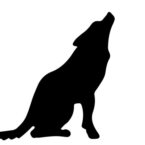 Wolf Tone Recorders's avatar