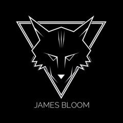 JamesBloomMusic