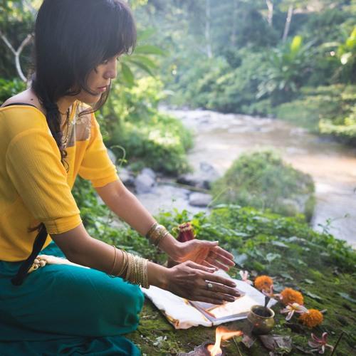 Vaidika Dharma Ritual & Teachings's avatar