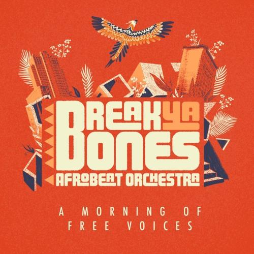 BREAK YA BONES Afrobeat Orchestra's avatar