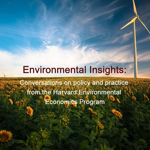 Environmental Insights's avatar