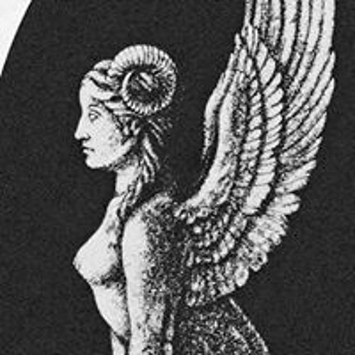 Daniele Valeriani's avatar