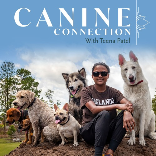 Canine Connection's avatar
