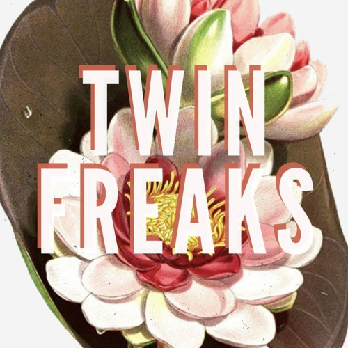 Twin Freaks's avatar