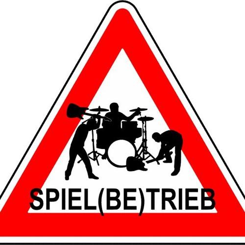 Spiel(be)trieb's avatar