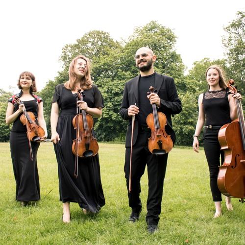 Camilli String Quartet's avatar