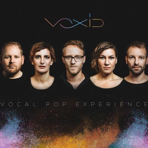 VOXID's avatar