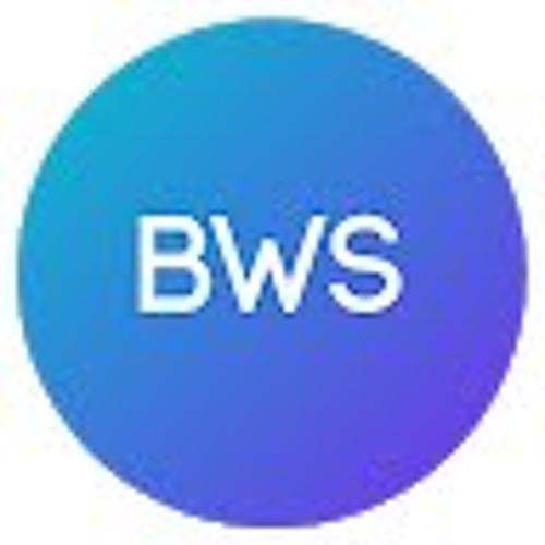 Benatti Web Solutions's avatar