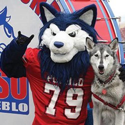 English 310 @ CSU-Pueblo's avatar