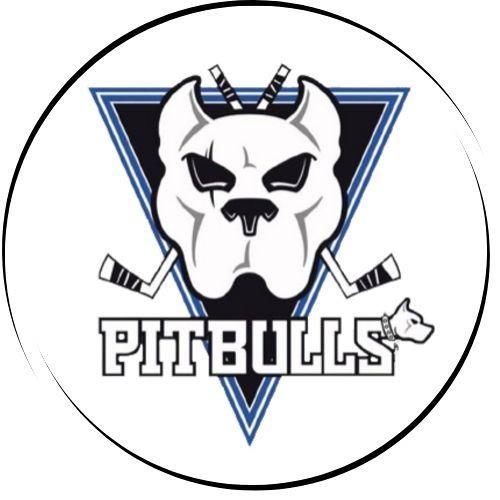 Bristol Pitbulls's avatar