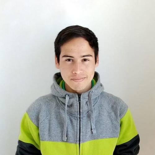JaviertINC's avatar