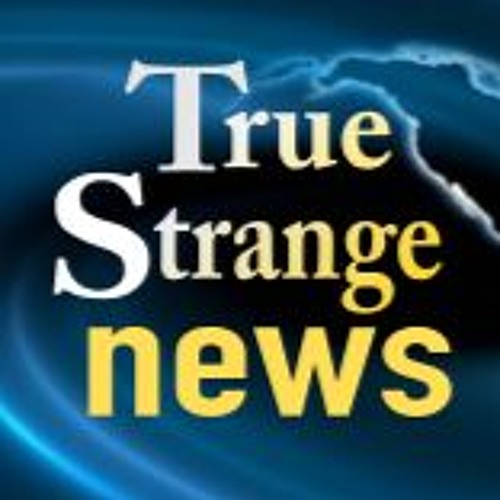 True Strange News's avatar