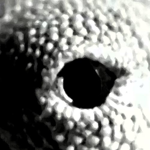bradlee z / skydaddy's avatar