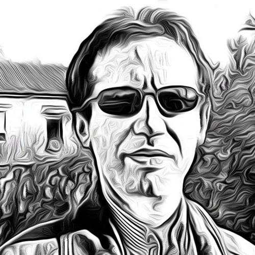 Rui L Magro's avatar