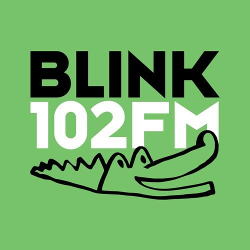 BLINK 102 FM's avatar