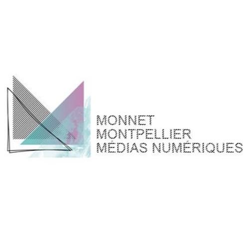 DNMADe Numérique Jean Monnet Montpellier's avatar