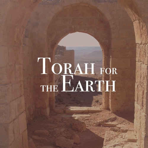 Torah for the Earth's avatar