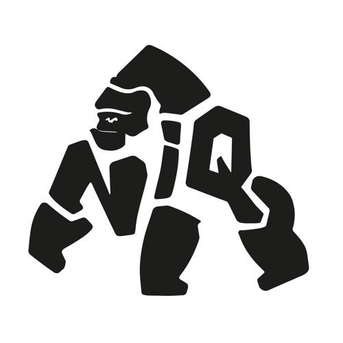 NIQ's avatar