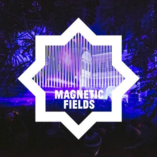 Magnetic Fields Festival's avatar
