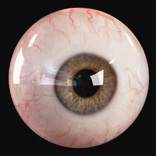 👁🗨 ojo 👁🗨's avatar