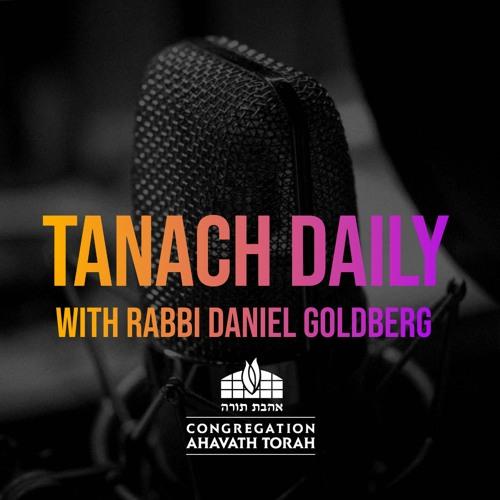 Tanach Daily's avatar
