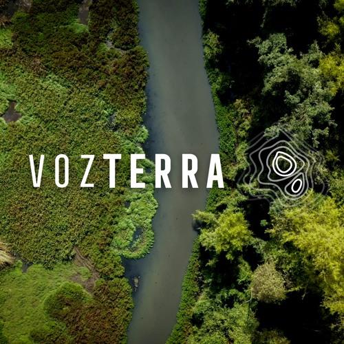Voz Terra's avatar