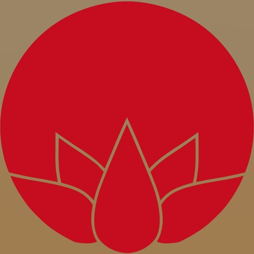 Svayoga Meditation's avatar