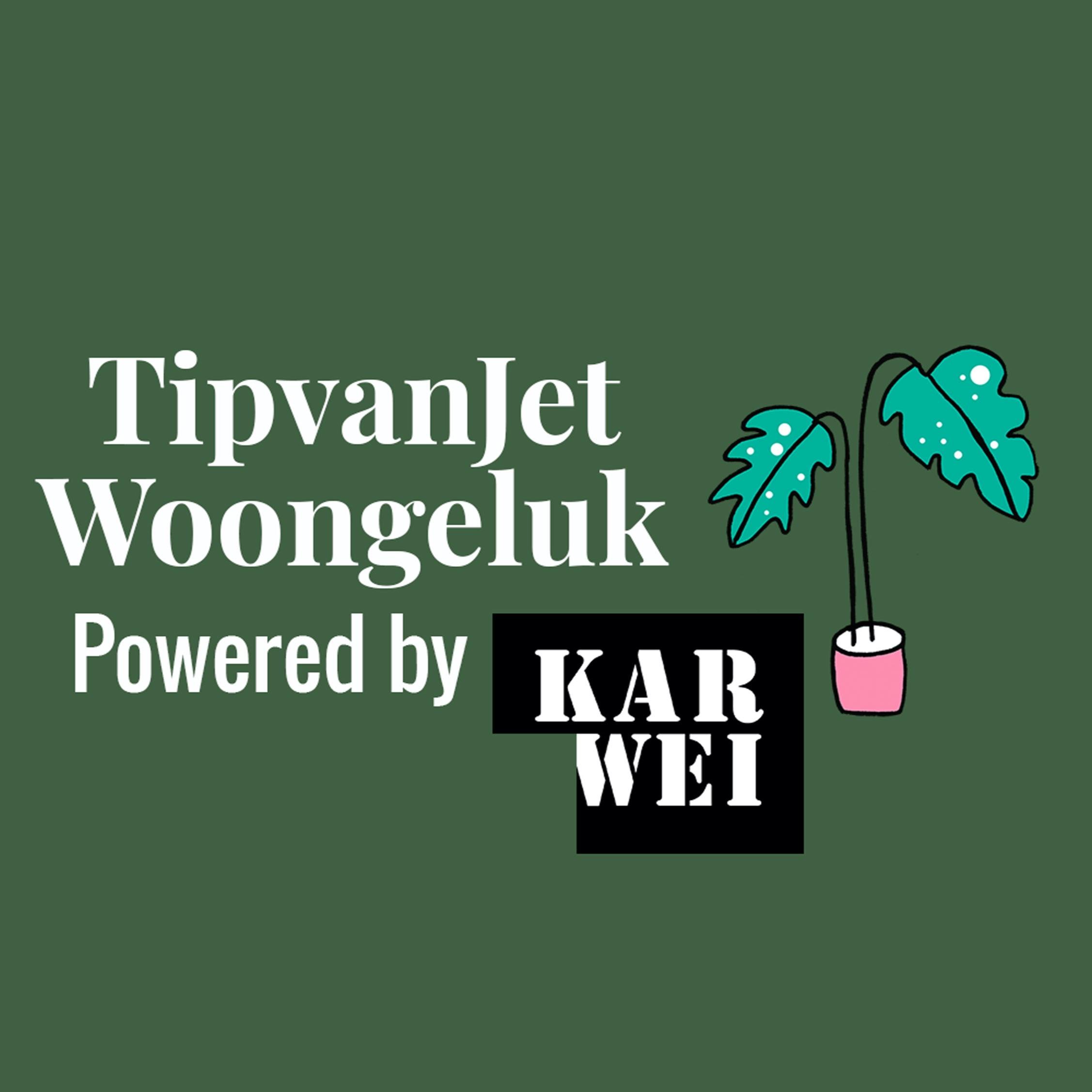 TipvanJet Woongeluk Podcast logo