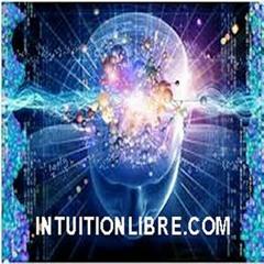 intuitionlibre.com