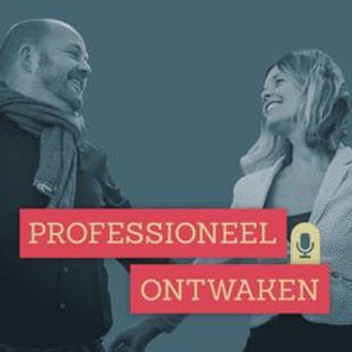 Professioneel Ontwaken's avatar